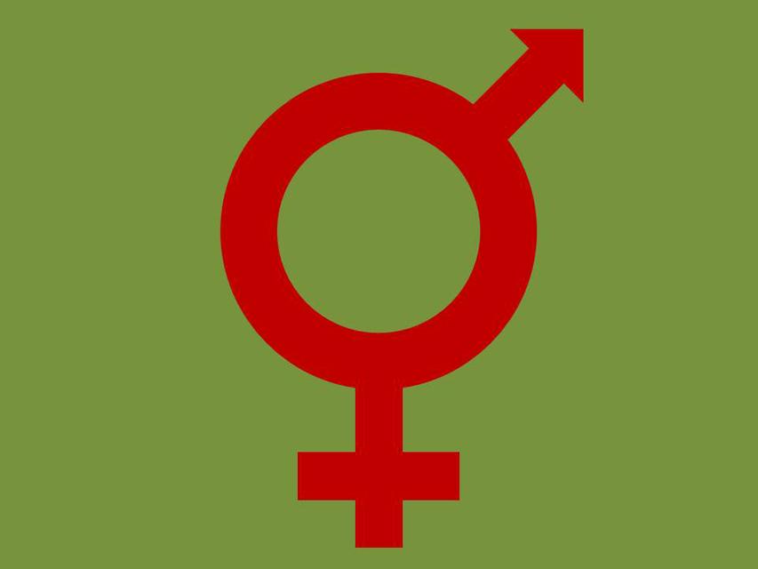 Weibchen Zeichen